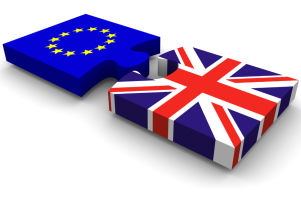 EU Referendum | Questions to Consider | Steve Petch Blog