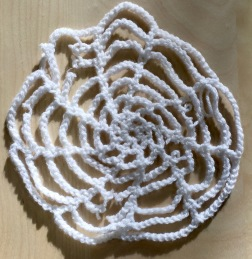 Jenny's spiders' web