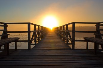 beach-bench-boardwalk-276259