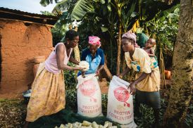Adakanou (middle), with other caregivers from her project collecting Cassava flour to sell and generate an income